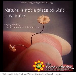 The Great Gathering Tiny Fungi